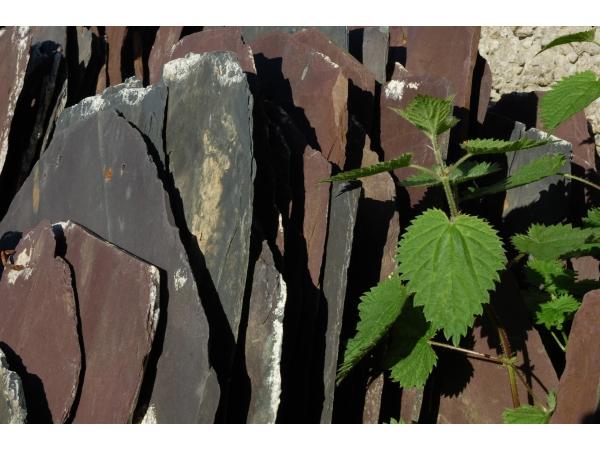 slate-tiles-waiting-to-be-repurposed