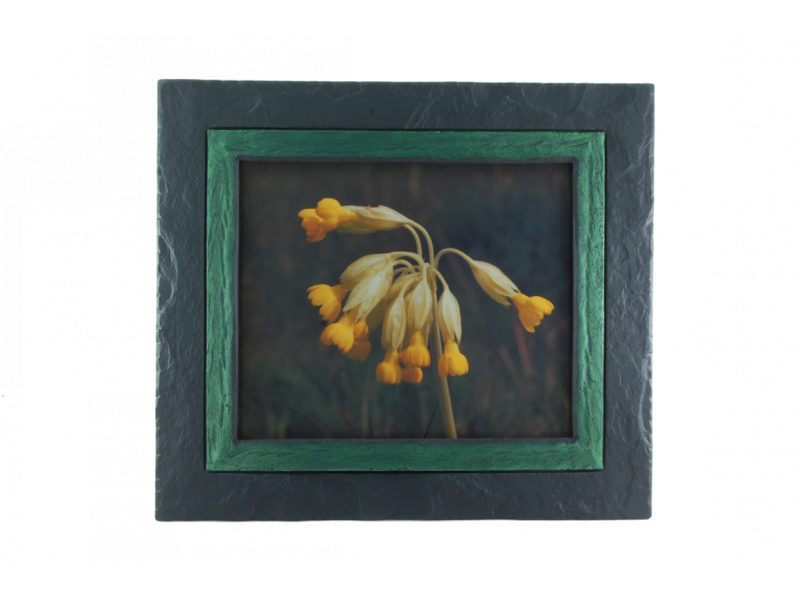 cowslip-in-slate-frame-green-band-medium