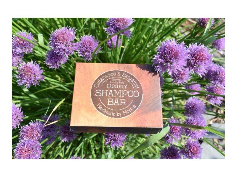 shampoo bar for men